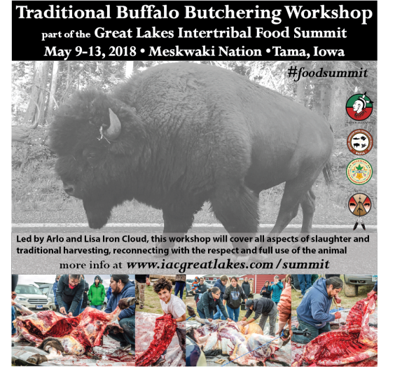 meskwaki_buffalo workshop#2