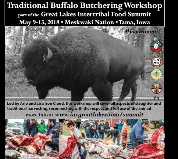 meskwaki_buffalo workshop#2