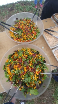 Foraging_Salad